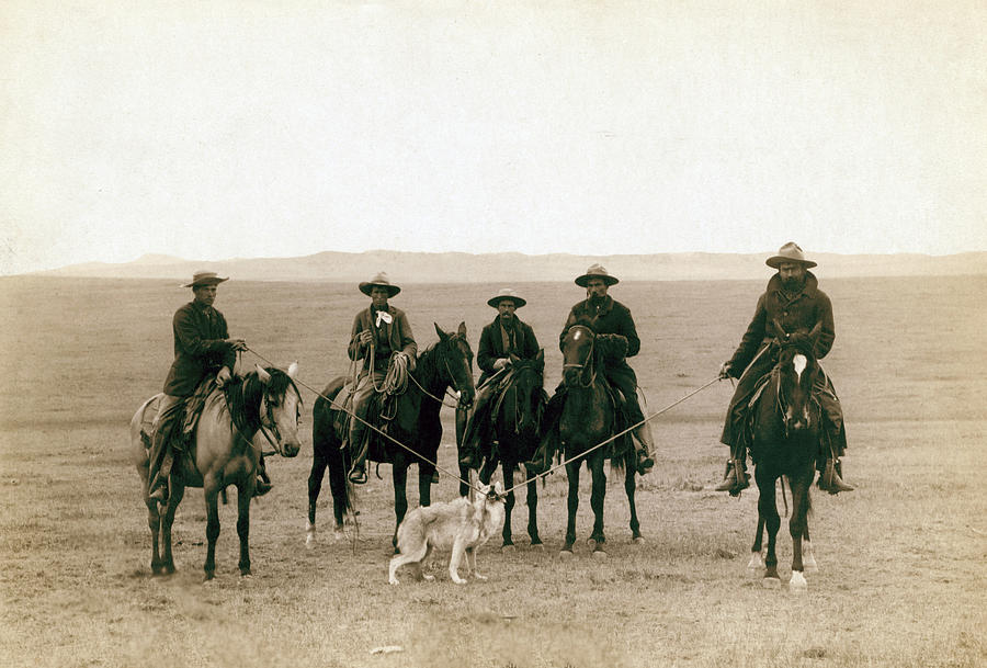 Roping a grey wolf. Everett Collection
