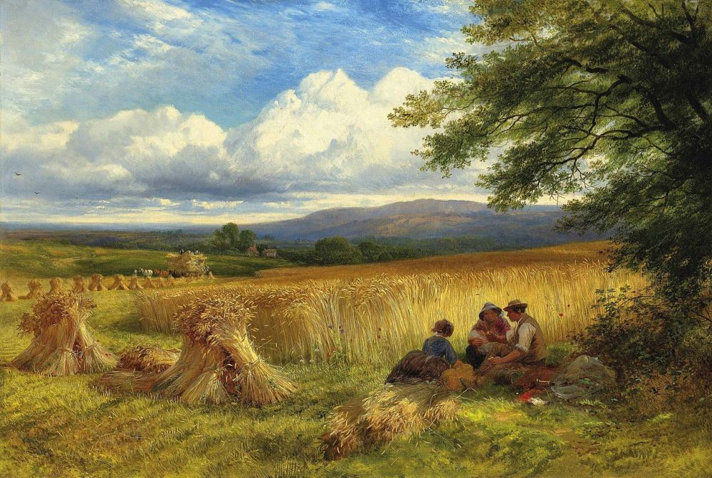 harvest rest by george cole pd