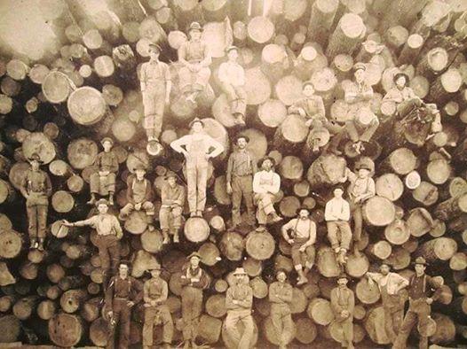 loggers-1900