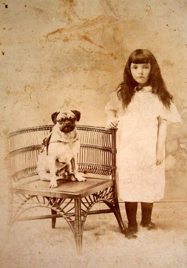 Children and their dogs in the 19th century (51)
