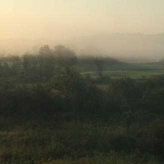 Morning at Middlemay Farm