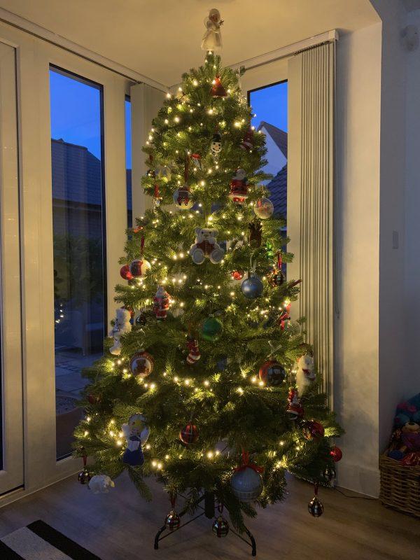 #christmastree #christmas #charity #dogstrust